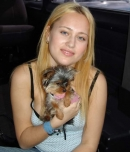 Pic of Brynn Brook in bangbus episode: Who DID let the dogs out?