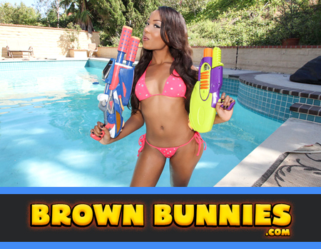 Brown Bunnies